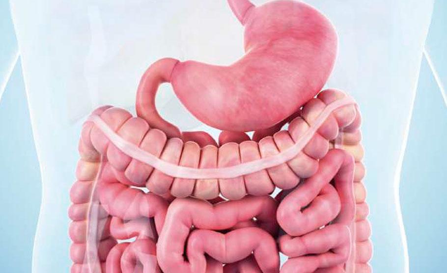 Fellowship de Investigación Clínica en Cirugía Digestiva