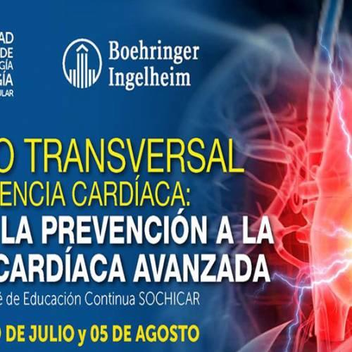 Cuarta sesión del Curso Transversal de Insuficiencia Cardíaca